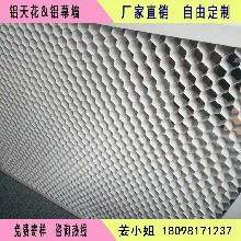 铝蜂窝板厂直销冲孔铝蜂窝板白色铝蜂窝板吸音铝蜂窝板图片