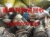 漳州港废旧回收