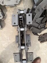 TB提升机链条厂商图片
