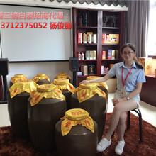 佛山唐三镜品牌米酒设备图片