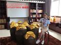 珠海唐三镜设备传统酿酒设备图片