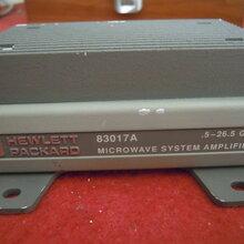 HP/惠普83017A频谱网络分析仪放大器.5-26.5GHz图片