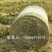 厂家生产直销打捆网大圆捆打包网农作物秸秆捆草网