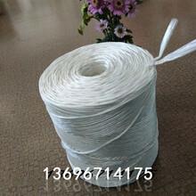 黑龙江省圆捆机打捆机打包绳打捆绳捆草绳麻绳