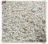 大庆熟芝麻批发无杂质干净无沙调味磨酱食品厂专用图片