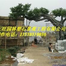 安庆宜秀钟乳石假山欢迎图片