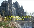 汶上假山假树《龟纹石假山》价格%%8%%8