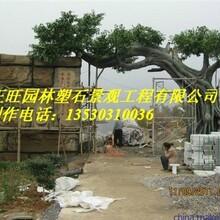 钦州浦北县水泥仿木栏杆欢迎图片