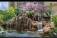 云和县假山假树盆景制作大全
