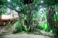 郴州假山郴州假树开发公司