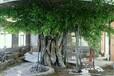 泉州仿木栏杆泉州假山假树生产厂家