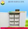 豆芽生长机自动控温豆芽机黄绿豆芽机