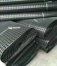 泰安江帆排水板厂家排水板报价排水板价格