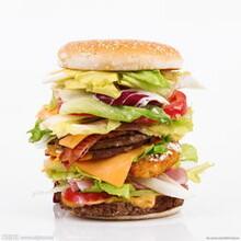 麥兜mcdull漢堡炸雞加盟費及招商加盟電話圖片