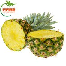 点点乐商城广西种植泰国香水小菠萝水果香甜多汁美味甜蜜图片