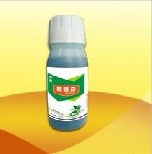 高效杀菌剂杀菌剂厂家批发优质杀菌剂黄瓜专用山菌剂辣椒专用杀菌剂