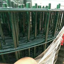 养殖铁丝网圈地荷兰网浸塑荷兰网护栏厂家图片