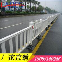贞丰道路栏杆不锈钢围栏耐晒防撞护栏