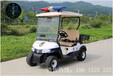 2座高尔夫球车电动旅游观光车巡逻车厂家直销