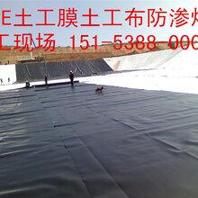 福建鱼塘养殖土工膜。生产厂家