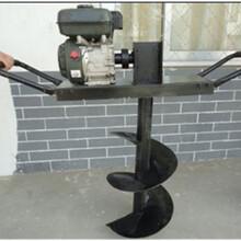柳州超大马力汽油地钻机多用植树钻坑机图片
