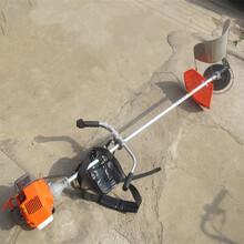 安庆背负式小型收割机青稞工厂图片