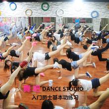 深圳宝安龙华零基础学跳舞的去哪里