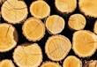 赤峰进口木材丨全程代理报关程序丨最快通关