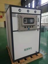 防爆等級ip65高純氫氣純化設備圖片