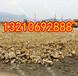 柳州防渗膜价格