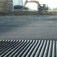 呼和浩特排水板A軟基處理排水板A排水板生產廠家A排水板供應商圖片