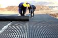 杭州塑料排水板厂家A50乘50蓄排水板A楼顶排水板价格A路基塑料排水板哪里有