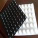 盐城塑料排水板生产厂家A蓄排水板规格A楼顶排水板A路基塑料排水板