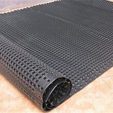 连云港排水板厂家A防排水板公司A蓄排水板的价格A渗排水板价格图片