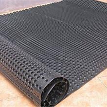 遵义塑料排水板A巴中塑料排水板A贵阳塑料排水板A河南排水板价格图片