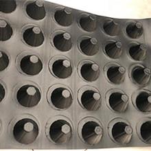 南陽排水板廠家A塑料排水板多少錢一米A防蓄排水板現貨Ape500排水板哪里有圖片