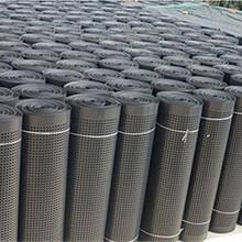 常州排水板廠家A蓄排水板價格A土工排水板A排水板批發價圖片