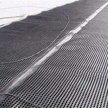 杭州排水板生产厂家A蓄排水板生产厂家A30排水板哪里有A热熔型塑料排水板多少钱一平图片