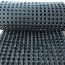 貴州防排水板A花園排水板價格A復合排水板A防排水板報價圖片