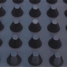 池州排水板生产厂家A临沧排水板怎么安装A桂林排水板施工方法A韶关排水板价格图片
