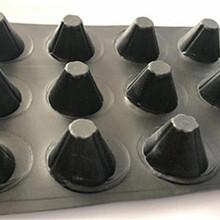 乌鲁木齐排水板A新余塑料排水板A邯郸塑料排水板A宿迁塑料排水板图片