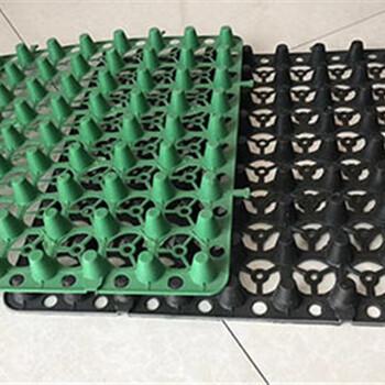 漯河排水板价格A晋城蓄排水板生产厂家A莱芜排水板厂家A东营蓄排水板哪里有