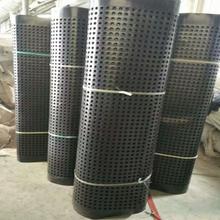 自貢排水板A排水板批發A排水板軟基處理A排水板型號圖片