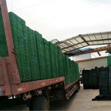 南京排水板生产厂家A高塑料排水板批发A排水板厂家哪家好A热熔型排水板现货供应图片