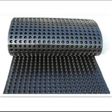 湖南塑料排水板厂家A北京塑料排水板A重庆塑料排水板厂家A朝阳塑料排水板图片