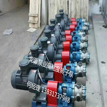 泊头市龙源泵业有限公司高粘度转子泵