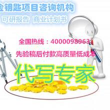 吴忠代写商业计划书服务模式全新升级图片