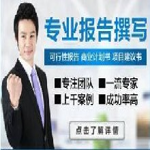 武汉代写商业计划书诚信为本质量为先图片