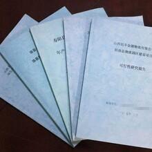芜湖代写可行性报告专注成就专业图片