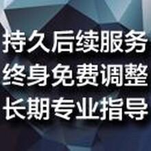 漯河代写投资价值及偿债能力分析报告让您融资一击必中图片